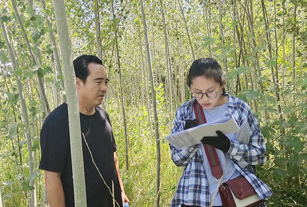 加强林木种苗管理 促进林业健康持续发展